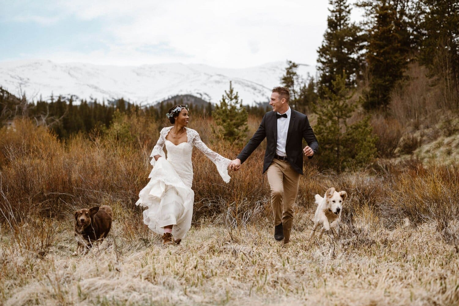 Bride and groom walk in a field with their two dogs.