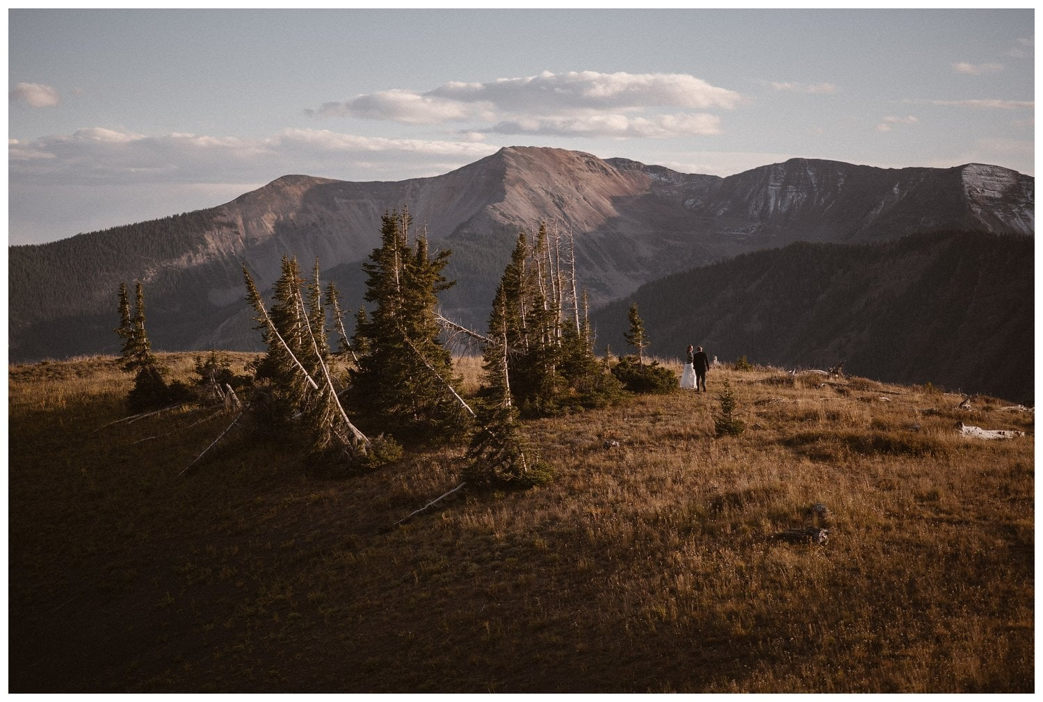 A bride and groom stand in the middle of the mountains with fallen trees surrounding them.