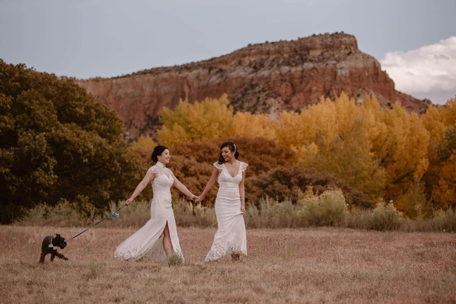 Two brides, both wearing white lace elopement dresses walk hand in hand with their dog on their wedding day.