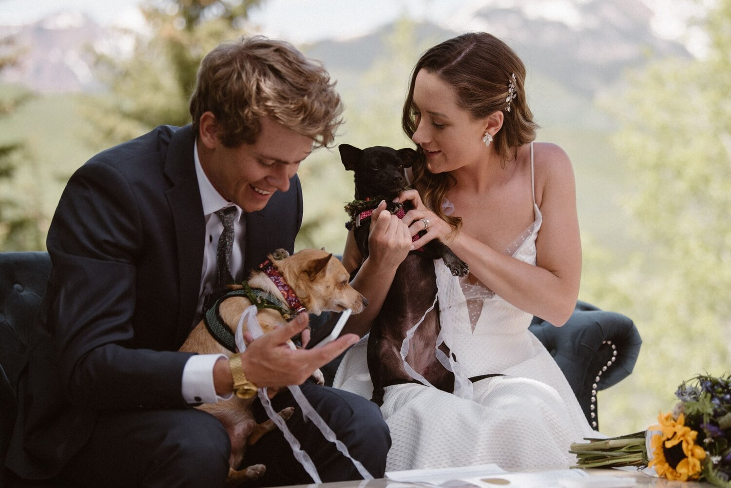 Bride and groom each hold a dog in their lap on their wedding day.