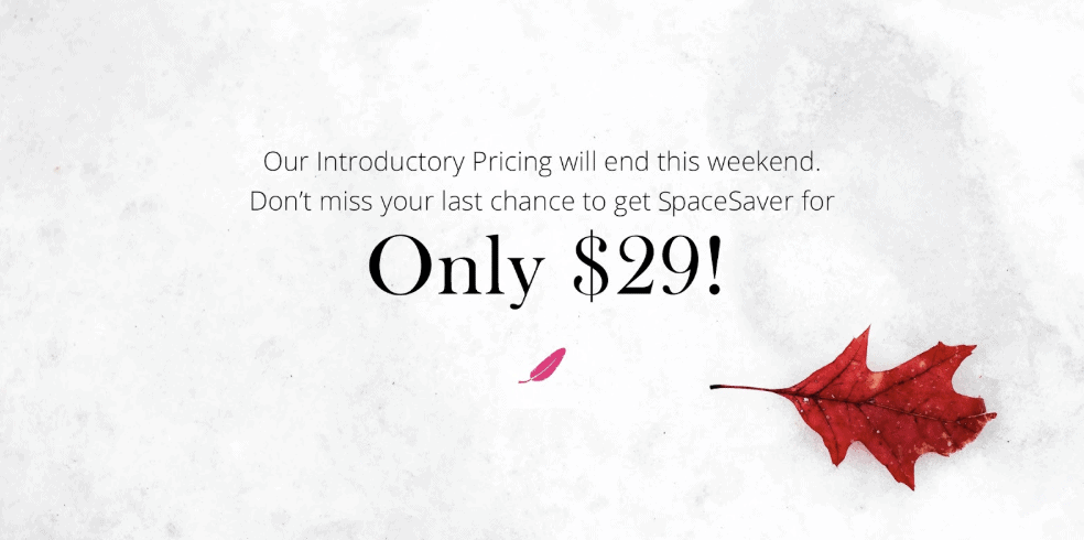 Flyer of a Black Friday Deal for SpaceSaver.
