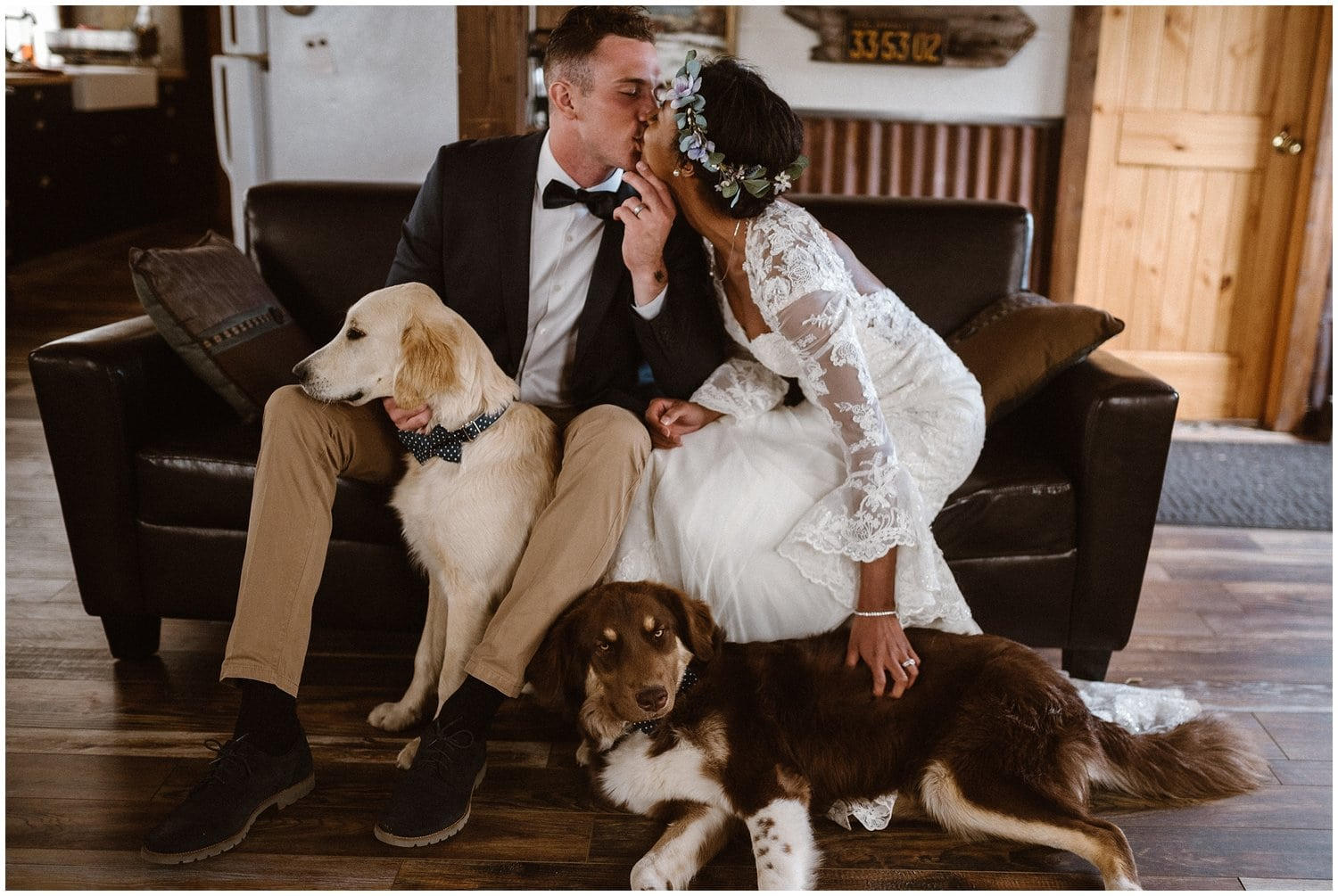 Bride and groom kiss in a room with their two dogs by their side.