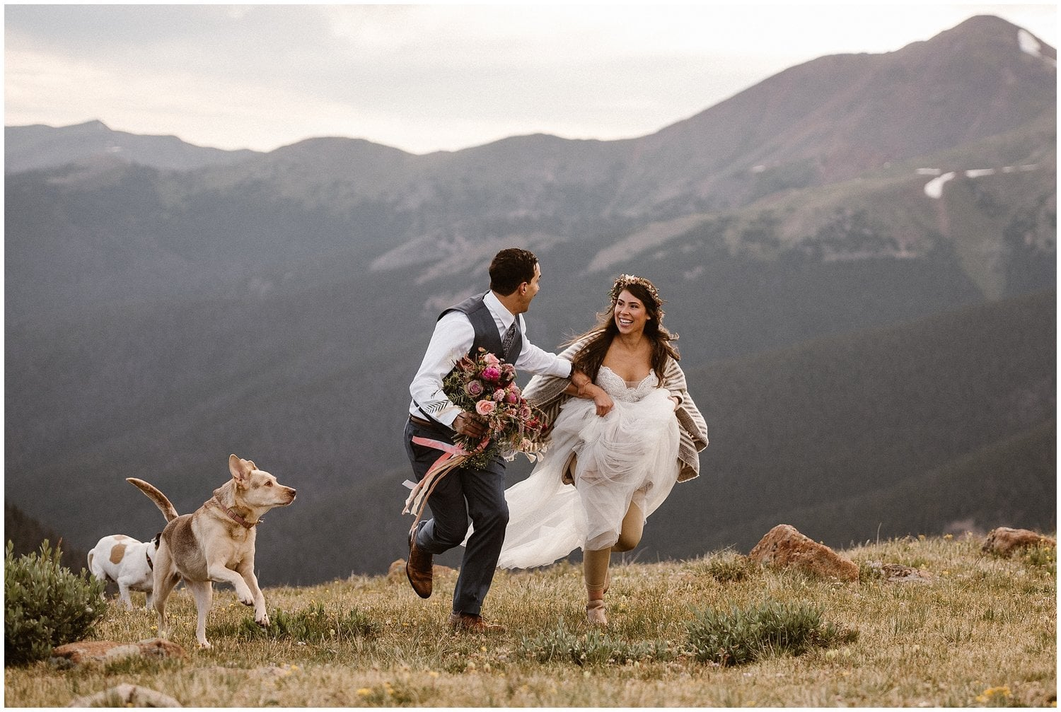 Bride and groom run up a mountain while their two dogs run with them by their side.