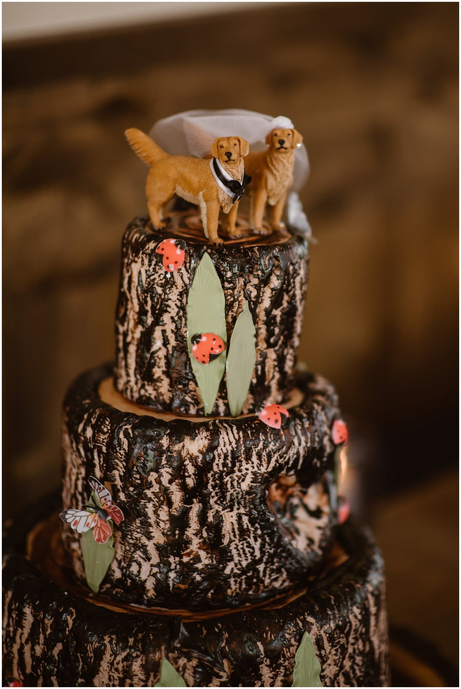 A chocolate wedding cake with a dog topper.