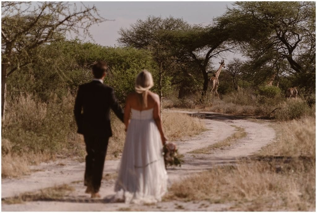 Bride and groom walk hand in hand on their wedding day. There are wildlife animals ahead on their path.