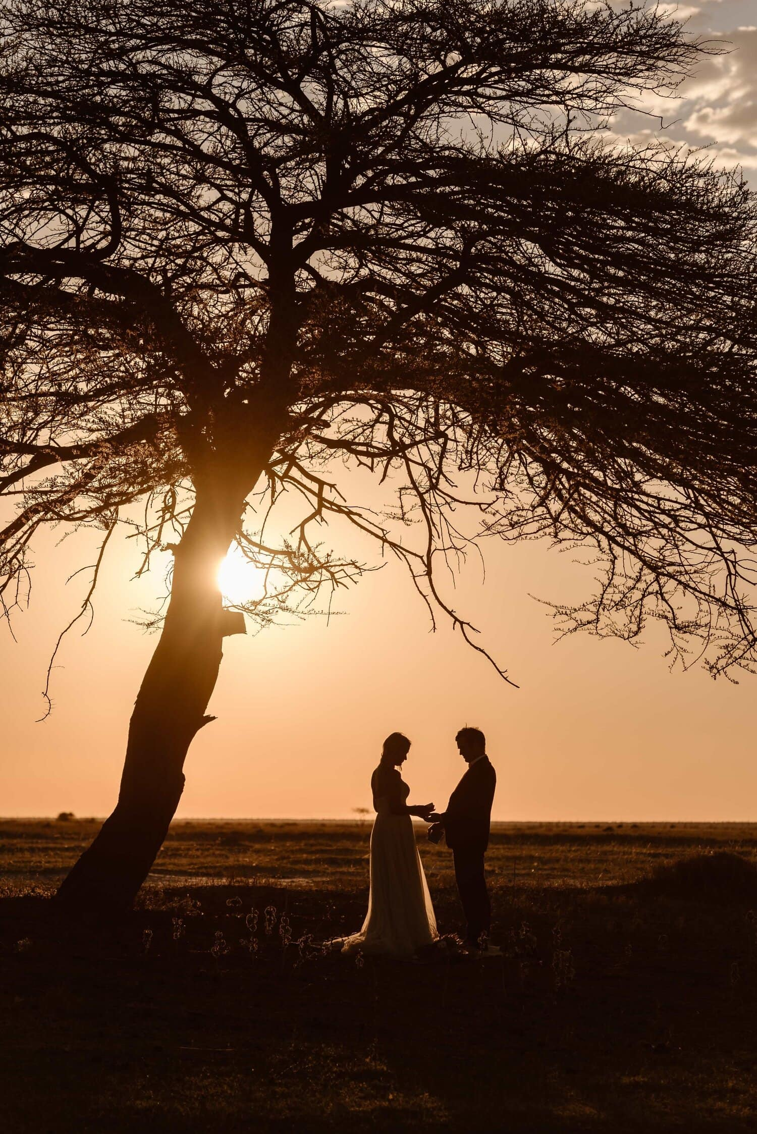 Elopement in Etosha Park - Namibia