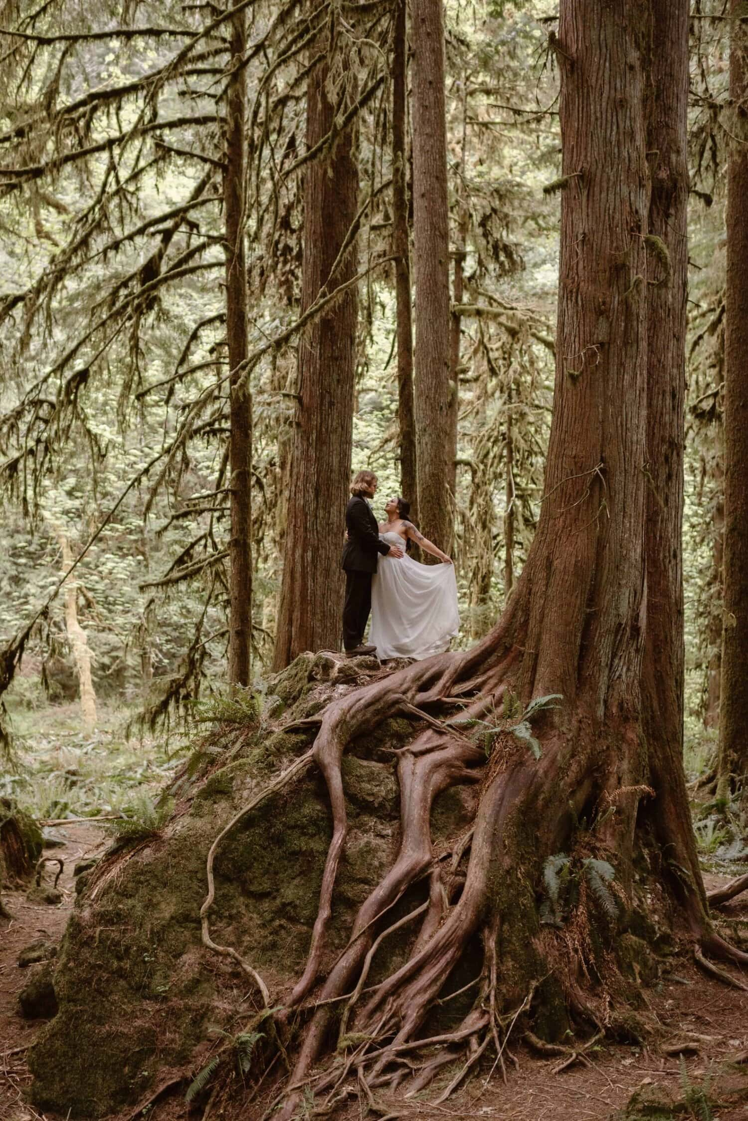 Bride and groom stand on a tree in a forest.