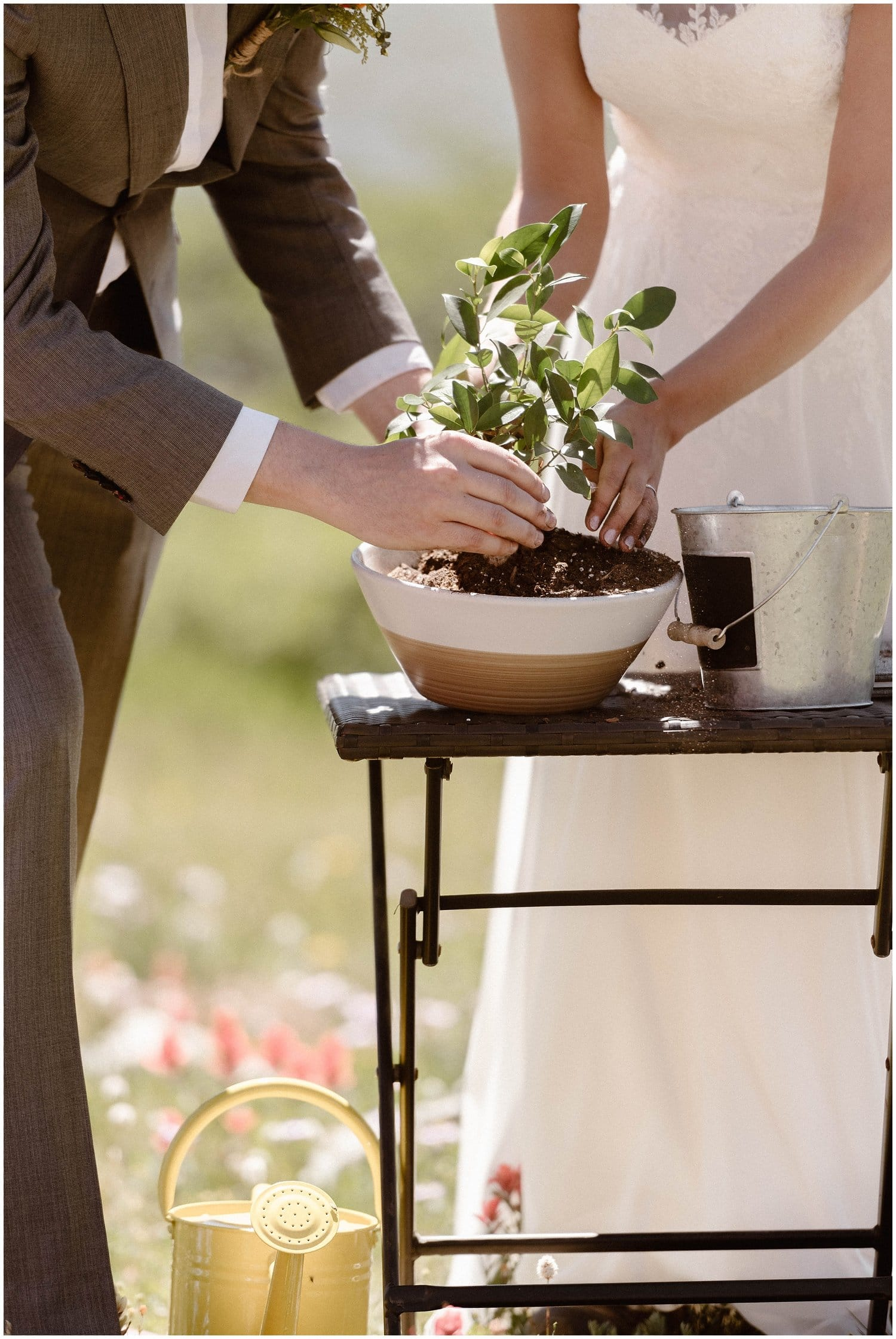 Close-up of bride and groom putting a plant in a pot.