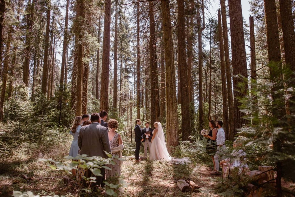 Bride and groom have their wedding ceremony with family and friends in the forest.