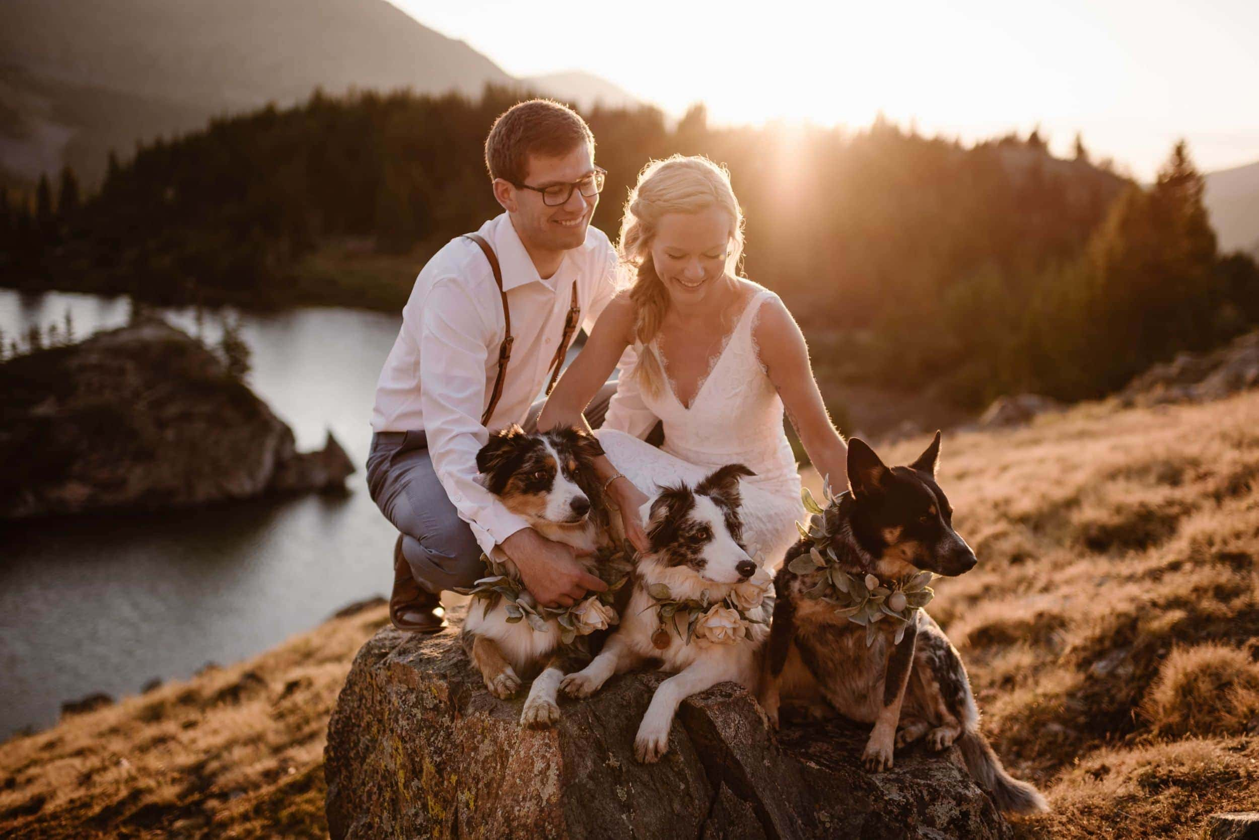A bride and groom sit on a rock while smiling at their three dogs sitting beside them.