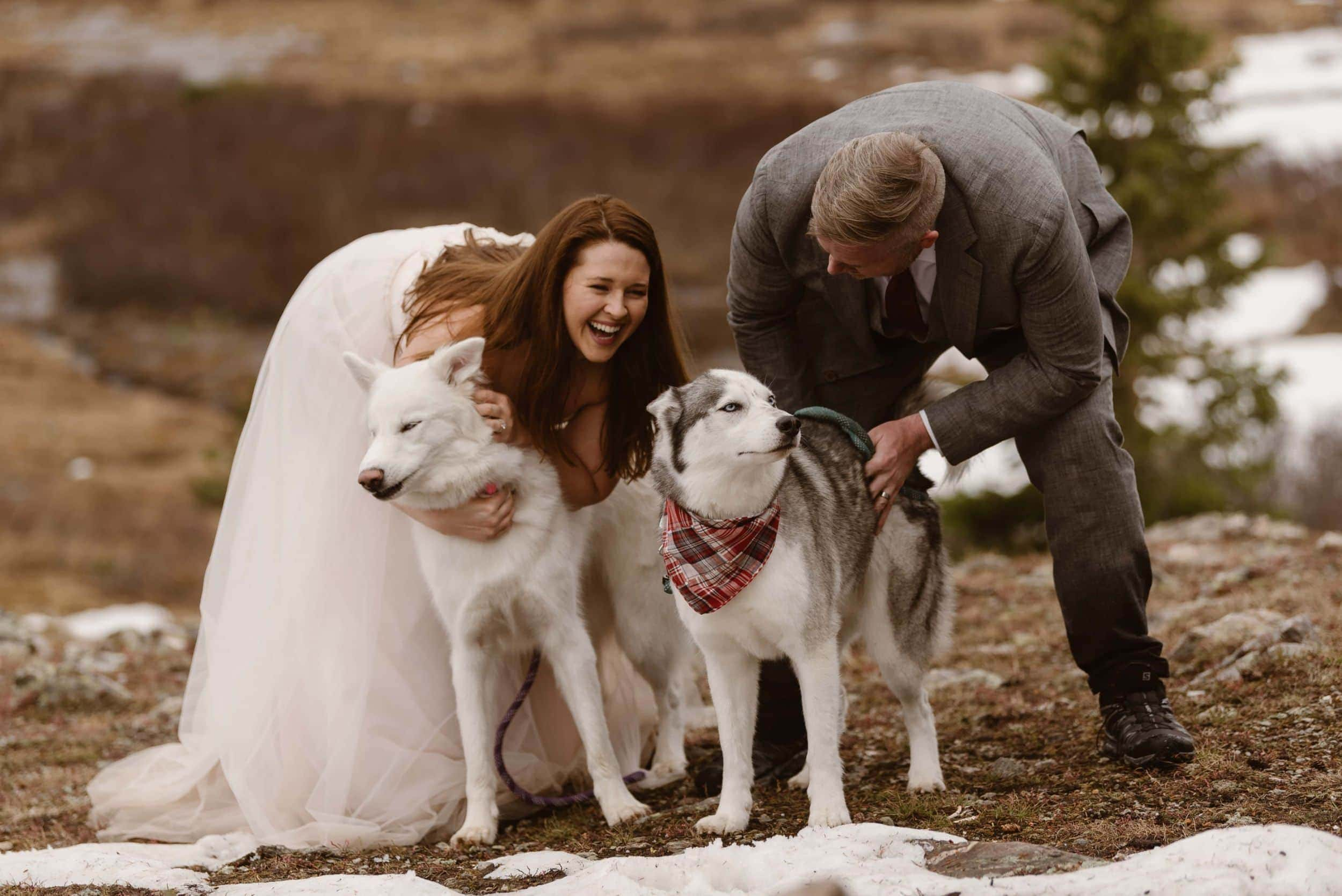 Bride and groom smile and lean forward to pet their two dogs.